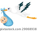 Stork with baby 29068938