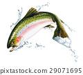 fish jumping splash 29071695