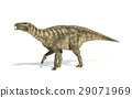Iguanodon Dinosaur photorealistic representation, side view. 29071969