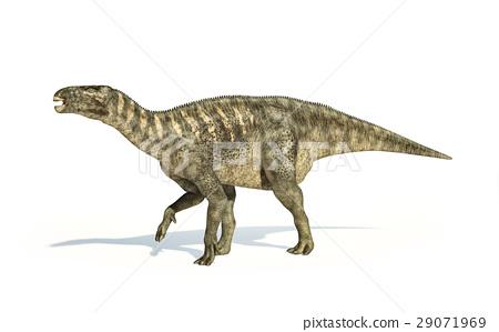 Iguanodon Dinosaur photorealistic representation, side view. 29071969