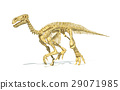 Iguanodon dinosaur full skeleton photo-realistic and scientifically correct, perspective view. 29071985