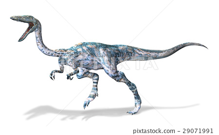 Photorealistic 3 D rendering of a Coelophysis. 29071991