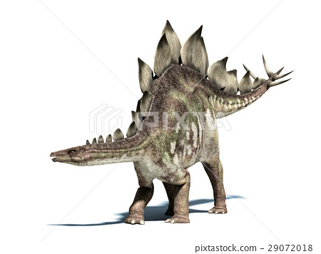 Stegosaurus dinosaur. Isolated on white, with clipping path. 29072018