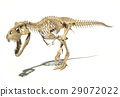 T-Rex photo-realistic full skeleton. Perspective view. 29072022