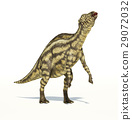 Maiasaura dinosaur, young child, photorealistic representation. Dynamic view. 29072032