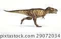 Tyrannosaurus Rex dinosaur, photorealistic representation. Side view. 29072034