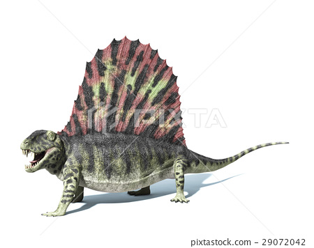 Dimetrodon dinosaur. On white background with dropped shadow and clipping path. 29072042