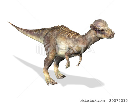 Photorealistic 3 D rendering of a Pachycephalosaurus. 29072056