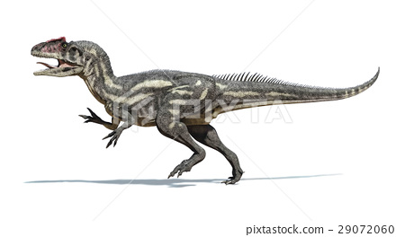 Photorealistic and scientifically correct 3 D rendering of an Allosaurus dinosaur. 29072060