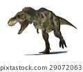 Tyrannosaurus Rex, isolated on white background with clipping path. 29072063
