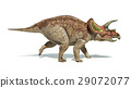 Triceratops dinosaur photorealistic and scientifically correct representation. Side view. 29072077