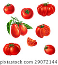 Several tomatoes of different kind. 29072144