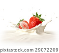 Two strawberries falling into milk splashing. 29072209