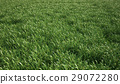 A very green and fresh looking grass field, bird eye view. 29072280