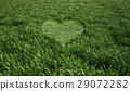 Grass meadow, bird eye view, with a heart shape cut grass in the middle. 29072282