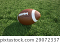 American football ball, on the grass. Close up. 29072337