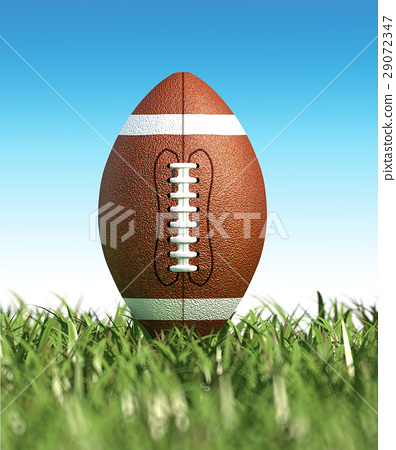 American football ball, on the grass. Close up. 29072347