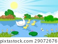 Duck family cartoon swimming 29072676
