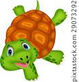 turtle animal cartoon 29073292