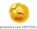요리 재료의 이미지에도 사용할 양파의 리얼 터치의 일러스트 소재 29073581