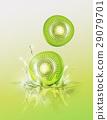 Slice Kiwi drop on juice splash and ripple 29079701