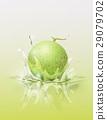 Melon cantaloupe drop on juice splash and ripple 29079702