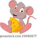 鼠標 老鼠 動物 29080877