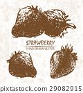 Digital vector detailed strawberry hand drawn 29082915
