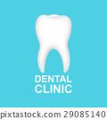 向量 向量圖 牙科 29085140