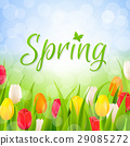 Spring Poster 29085272