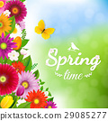 Spring Time Postcard With Butterfly 29085277