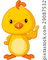 Cute Yellow Baby Chicken 29087532