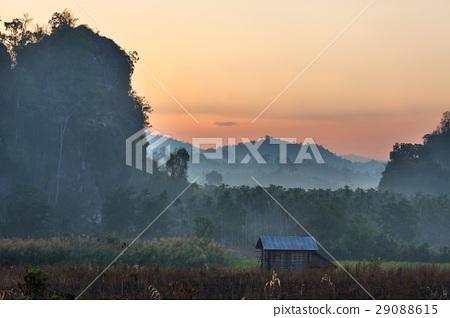 Northern Thailand 29088615
