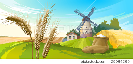illustration rural summer landscape 29094299