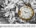 Antique pocket watch with gardenia flower 29106163