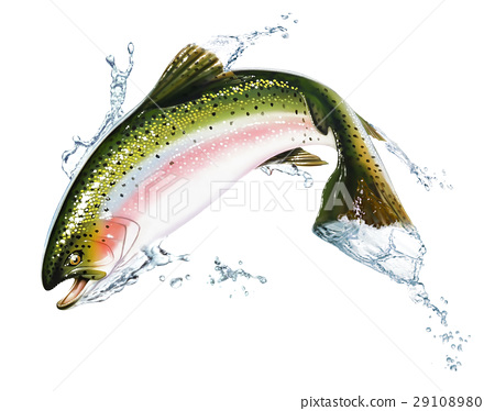 Fish jumping out of the water, with some splashes. 29108980