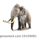 Photorealistic 3 D rendering of a Mammoth. 29109081