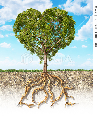 Cross section of soil showing a tree heart shaped, with its roots as text Love. 29109461