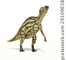Dinosaur, maiasaur, maiasaura 29109638