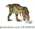 Tyrannosaurus Rex dinosaur, photorealistic representation. Dynamic view. 29109644