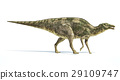 Side, View, Dinosaur 29109747