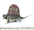 背景 恐龙 白色 29109913