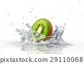 kiwi splashing into clear water 29110068