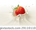 Strawberry falling into milk splashing. 29110110