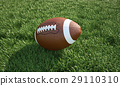 American football ball, on the grass. Close up. 29110310