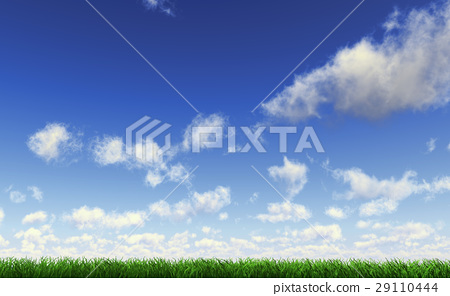 Grass viewed from a side at ground level with a fluffy cloudy sky. 29110444