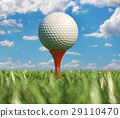 Golf ball isolated on tee in the grass. 29110470