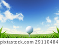 Green Golf court with close up on grass and ball on tee. 29110484