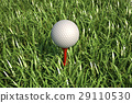 Golf ball isolated on tee in the grass. 29110530