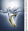fish, salmon, splashing 29110541